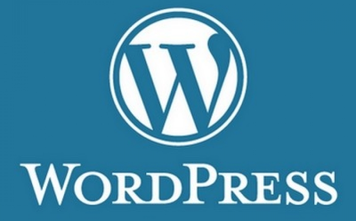 A Beginner's Guide to WordPress Blogging